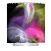 Swan And Cygnet Shower Curtain
