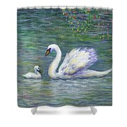 Swan And One Baby Shower Curtain