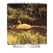 Swan At The Golden Lake Shower Curtain