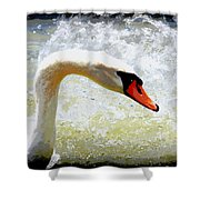 Swan - Beautiful - Elegant Shower Curtain