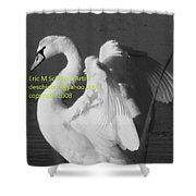 Swan Black And White Shower Curtain