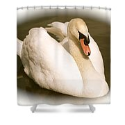 Swan Cameo In Sepia Shower Curtain