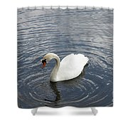 Swan Circles Shower Curtain