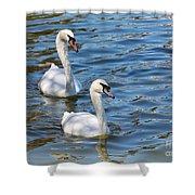 Swan Day Shower Curtain