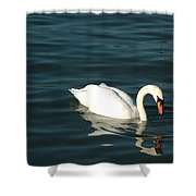 Swan Elegance Shower Curtain
