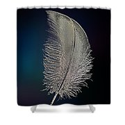 Swan Feather Shower Curtain