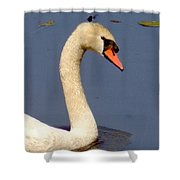 Swan Glide Shower Curtain
