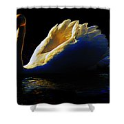 Swan In Golden Light Shower Curtain