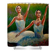 Swan Lake II Shower Curtain by John  Nolan