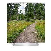 Swan Lake Trail In Grand Teton National Park-wyoming Shower Curtain