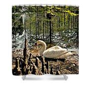 Swan Lake Watercolor Shower Curtain