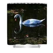 Swan Solitude Shower Curtain