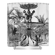 Swan Statue - Black And White With Vignette Shower Curtain