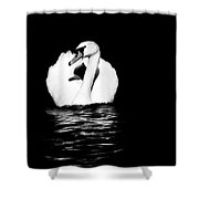 Swan White On Black Shower Curtain