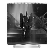 Swann Fountain At Night In Black And White Shower Curtain