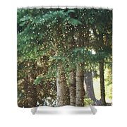 Swarm Of Gnats Shower Curtain