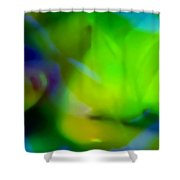 Sweet And Tart  Shower Curtain
