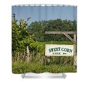 Sweet Corn Shower Curtain