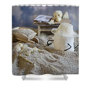 Sweet Discovery Shower Curtain