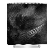 Sweet Dreams In Black And White Shower Curtain