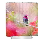 Sweet Hummingbird Love Shower Curtain
