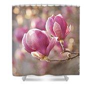 Sweet Magnolia Shower Curtain
