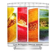 Sweet Pepper Watercolor Shower Curtain