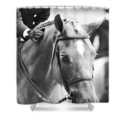 Sweet Pony Shower Curtain
