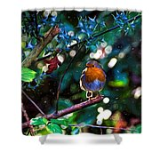 Sweet Robin Redbreast - Impressions Shower Curtain