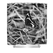 Sweet Seduction Black And White Shower Curtain