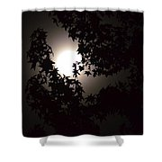 Sweet Silhouette Shower Curtain