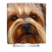 Sweet Silky Terrier Portrait Shower Curtain