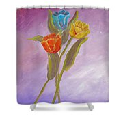 Sweet Tulips Shower Curtain