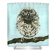 Sweetest Baby Owl Shower Curtain