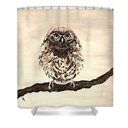 Sweetest Owl Shower Curtain