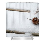 Sweetgum Seed Pod In The Snow Shower Curtain