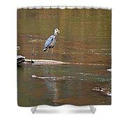 Sweetwater Creek Heron Shower Curtain