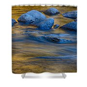 Swiftriver Reflections Shower Curtain