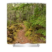 Swim Lake Trail Shower Curtain
