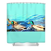 Some Ducks Are Just Happily Swimming With Their Team  Shower Curtain