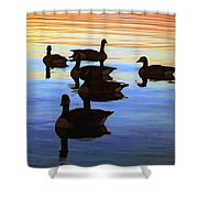 Swimming Geese Shower Curtain