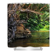 Swimming Hole Shower Curtain