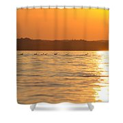 Swimming Into The Sun Shower Curtain
