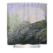 Swirling In Grace Shower Curtain