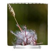 Swirling Wildflower Shower Curtain