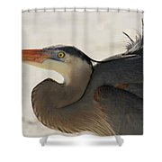Swoosh Shower Curtain