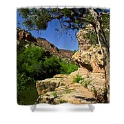 Sycamore Canyon Shower Curtain