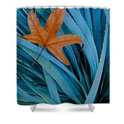 Sycamore Leaf And Sotol Plant Shower Curtain