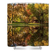 Sycamore Reflections Shower Curtain