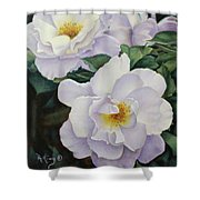 Sydneys Rose Oil Painting Shower Curtain